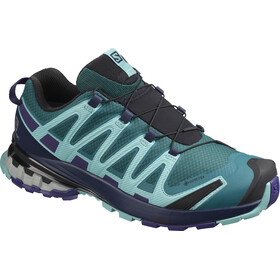 Salomon XA Pro 3D v8 GTX Schuhe Damen shaded spruce/evening blue/meadowbrook